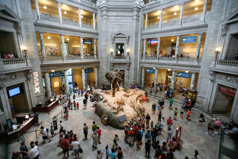 Interior do Museu Nacional de História Natural, nos EUA.
