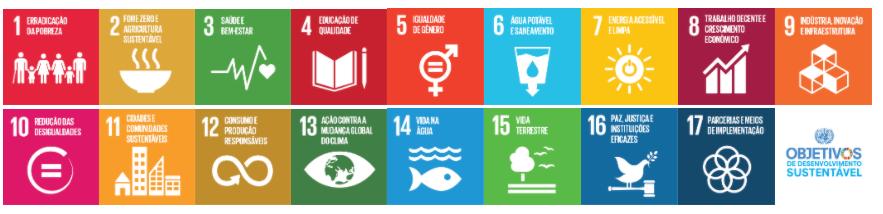 ONU, Os 17 ODS da Agenda 2030